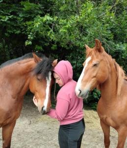 Pferdegestütztes_Coaching